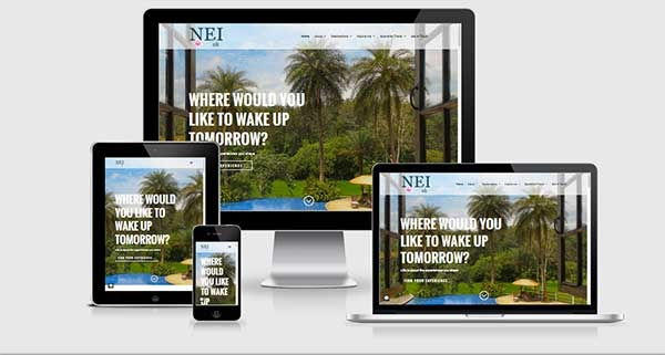 NEI UK website composite screenshot